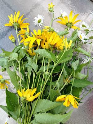 yellow, white, wildflowers