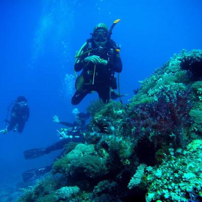foto diving di morotai