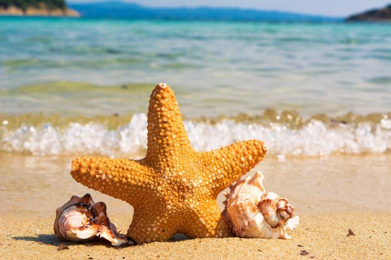 la plage des vacances