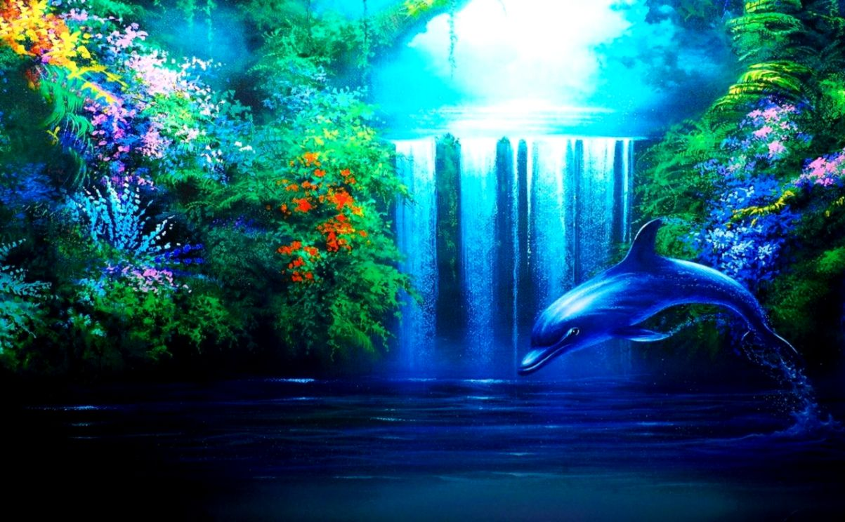 208 Dolphin HD Wallpapers Background Images Wallpaper Abyss