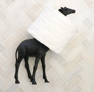 http://kailochic.blogspot.com/2015/05/craft-it-black-and-white-giraffe-toilet.html