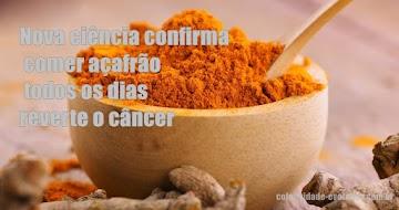 Nova ciência confirma comer açafrão todos os dias reverte o câncer