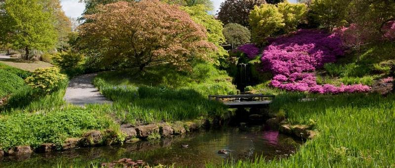 Wakehurst Kew Jardín Botánico