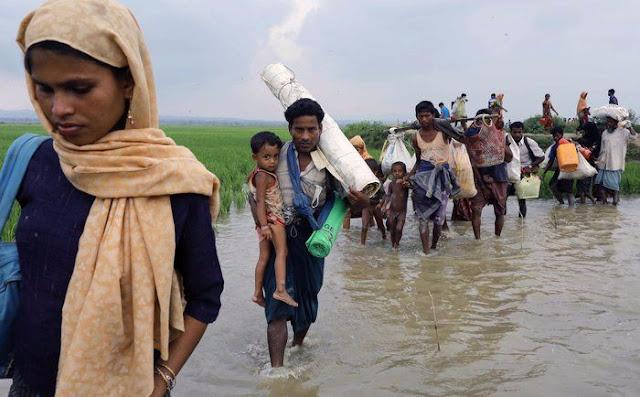 Jalan Kaki 175 KM, Pengungsi Muslim Rohingya Hanya Makan Daun Dan Minum Air Sungai
