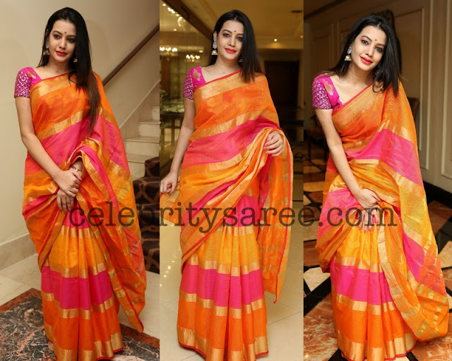 Diksha Panth in Stripes Silk Saree