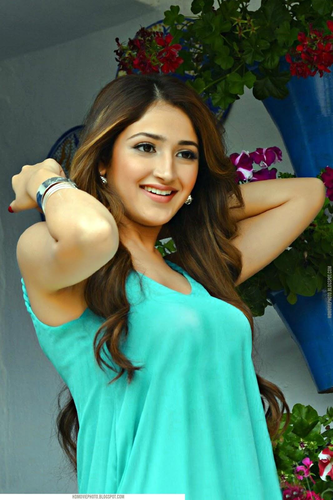 Bindu Madhavi in transparent saree   Actress wallpapers   Hot Wallpapers   Latest Photos