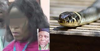 snake swallows jamb money