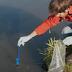Slimme toepassing eDNA-techniek in het waterbeheer