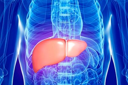 Kenali Apa Itu Penyakit Hepatitis Agar Keluarga Anda Dapat Terhindar Dari Penyakit Hepatitis