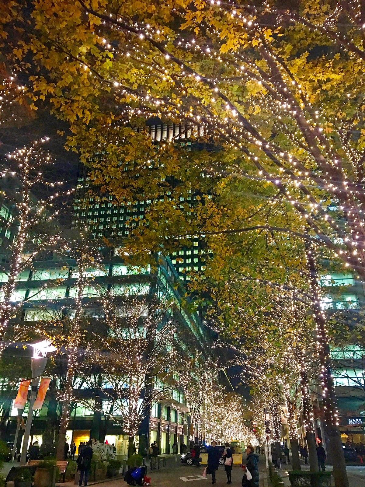 Tokyo Holiday Lights