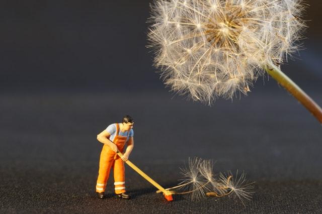 tips membersihkan debu rumah