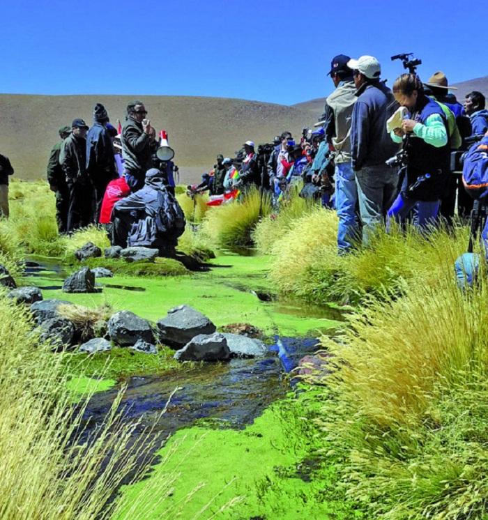 El manantial del Silala nace en bofedales de Potosí / EL POTOSÍ