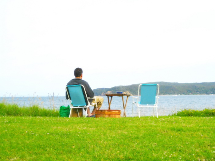 Breath taking places in New Zealand places to visit the countryside picnic by the sea