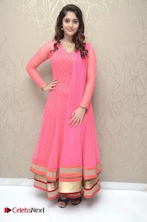 Actress Surabhi Pictures in Pink Dress at Gentleman Success Meet  0027