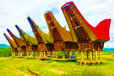 Rumah adat orang Toraja di Sulawesi Selatan adalah Tongkonan. Kolong rumah itu berupa kandang kerbau belang atau Tedong Bonga. Di depan rumah tersusn tanduk - tanduk kerbau, sebagai lambing pemiliknya telah berulang kali mengadakan upacara kematian secara besar - besaran. Tongkonan terdiri dari 3 ruangan : Ruang tamu, Ruang makan dan Ruang belakang.