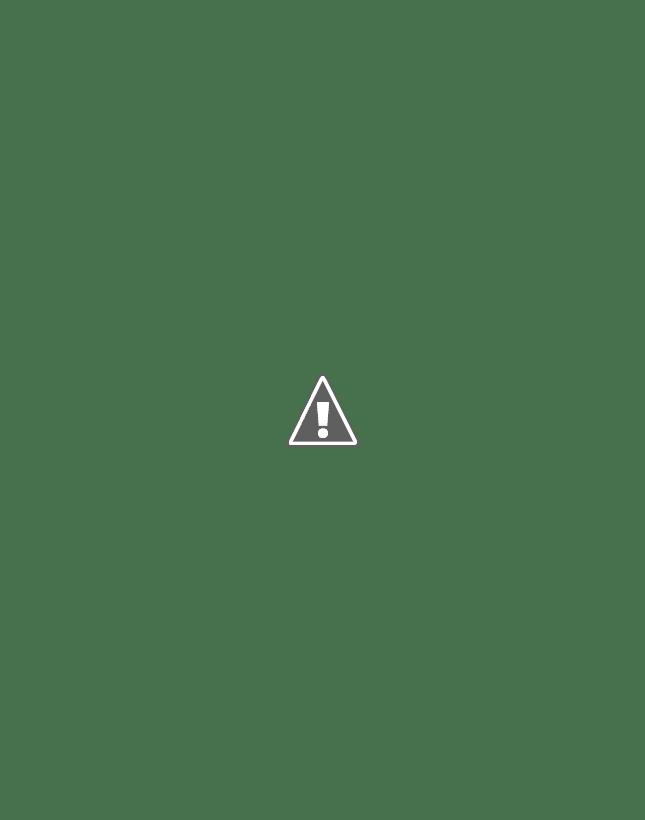 Cactus paper piece block