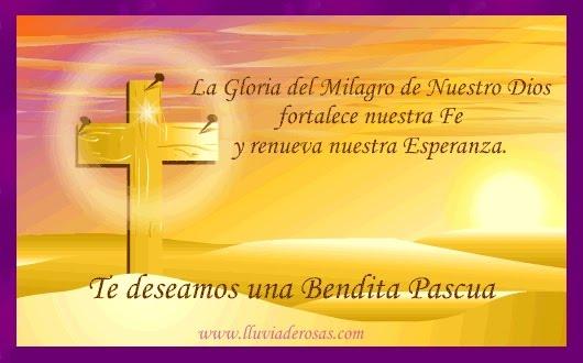Kampus Latinoamericanus Felices Pascuas