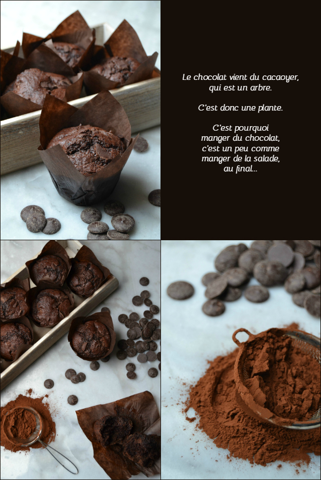 Recette facile muffins au chocolat - muffinzlover.blogspot.fr