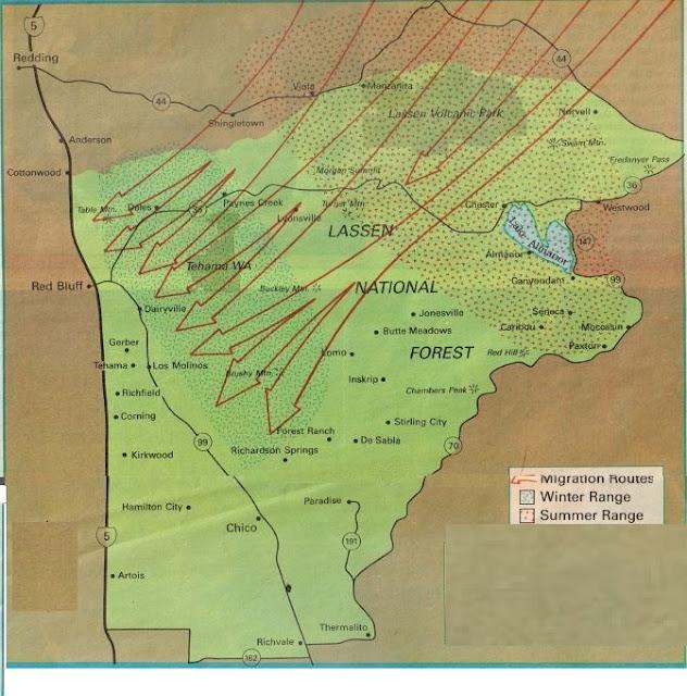 where to hunt c4, best deer hunting california, hunting fishing maps california