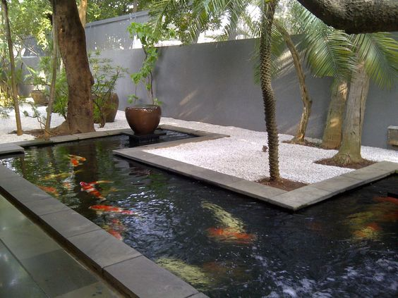Desain kolam koi minimalis tuban salwa alam art for Koi pool decor