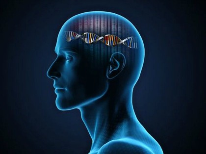 genes personalidad