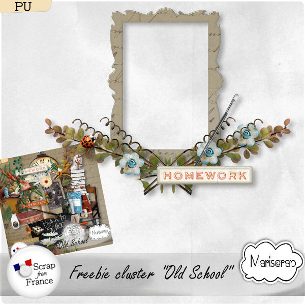 http://scrapfromfrance.fr/shop/index.php?main_page=product_info&cPath=88_91&products_id=17056