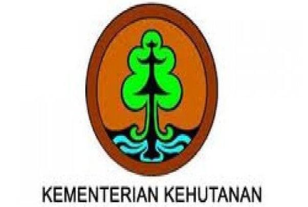 lowongan kerja kementerian lingkungan hidup dan kehutanan, departemen kehutanan