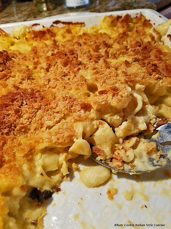 this is a baked macaroni and cheese with chicken pasta casserole