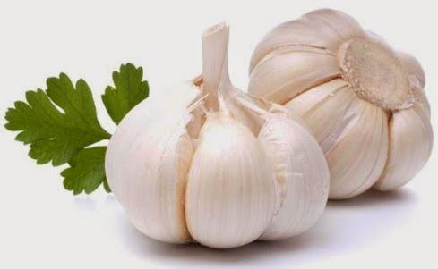 Tips dan Cara Melakukan Diet mayo yang Benar