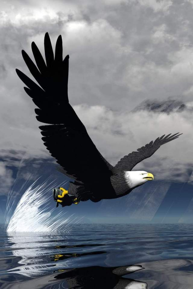 3D iPhone Wallpapers: 3D Eagle Flying iPhone Wallpaper
