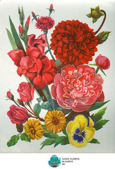 Лото для детей СССР советское. Цветут цветы игра СССР Файнштейн Минаева 1981, 1985, 1990, 1991.