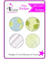 http://www.4enscrap.com/fr/accessoires/856-badge-11-4016061600024.html