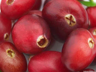 Cranberry fruit images wallpaper