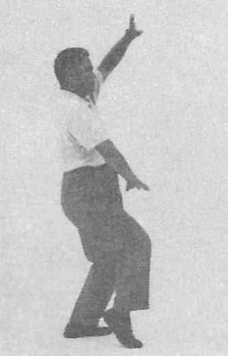 Tai Chi Chuan (Square Form) 53. Twist The Body And Kick