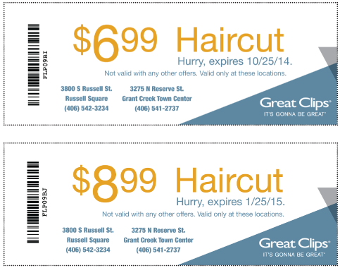 graphic regarding Sports Clips Free Haircut Printable Coupon identified as Wonderful clips coupon 2019 printable : Journey kits