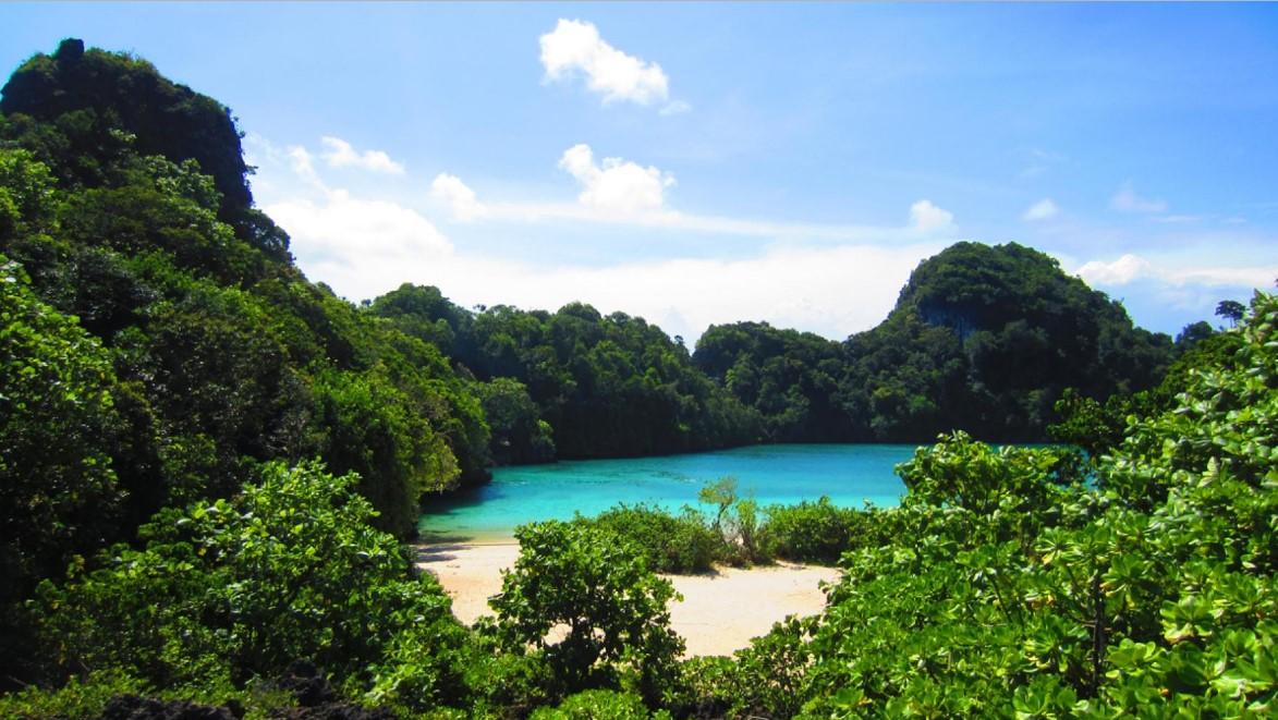 Hasil gambar untuk KEINDAHAN DAN KEUNIKAN pantai segara anakan pulau sempu malang