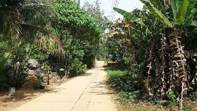 Foto van Koh Mook´s hoofdweg die het eiland doorkruist