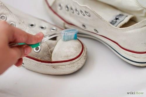 vs giày thể thao