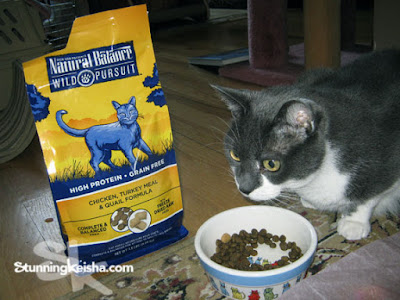 Do You Feed Your Cat Like Nature Intended? Getting Wild With #NaturalBalance #ad
