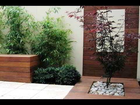 Taman Kecil Minimalis Dalam Rumah