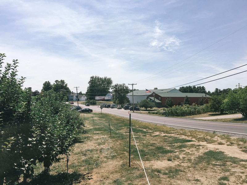Sunnycrest Farm Apple Picking