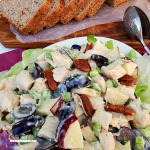 The perfect Fall lunch or light dinner - ready in 15 minutes !  Juicy Fall flavors throughout this filling, fruity Chicken Salad