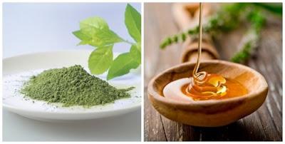Trị nám bằng bột trà xanh với mật ong