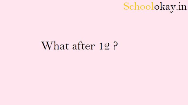 https://www.schoolokay.in/WHAT AFTER 12?