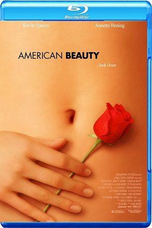 American Beauty BRRip BluRay Single Link, Direct Download American Beauty BRRip 720p, American Beauty BluRay 720p