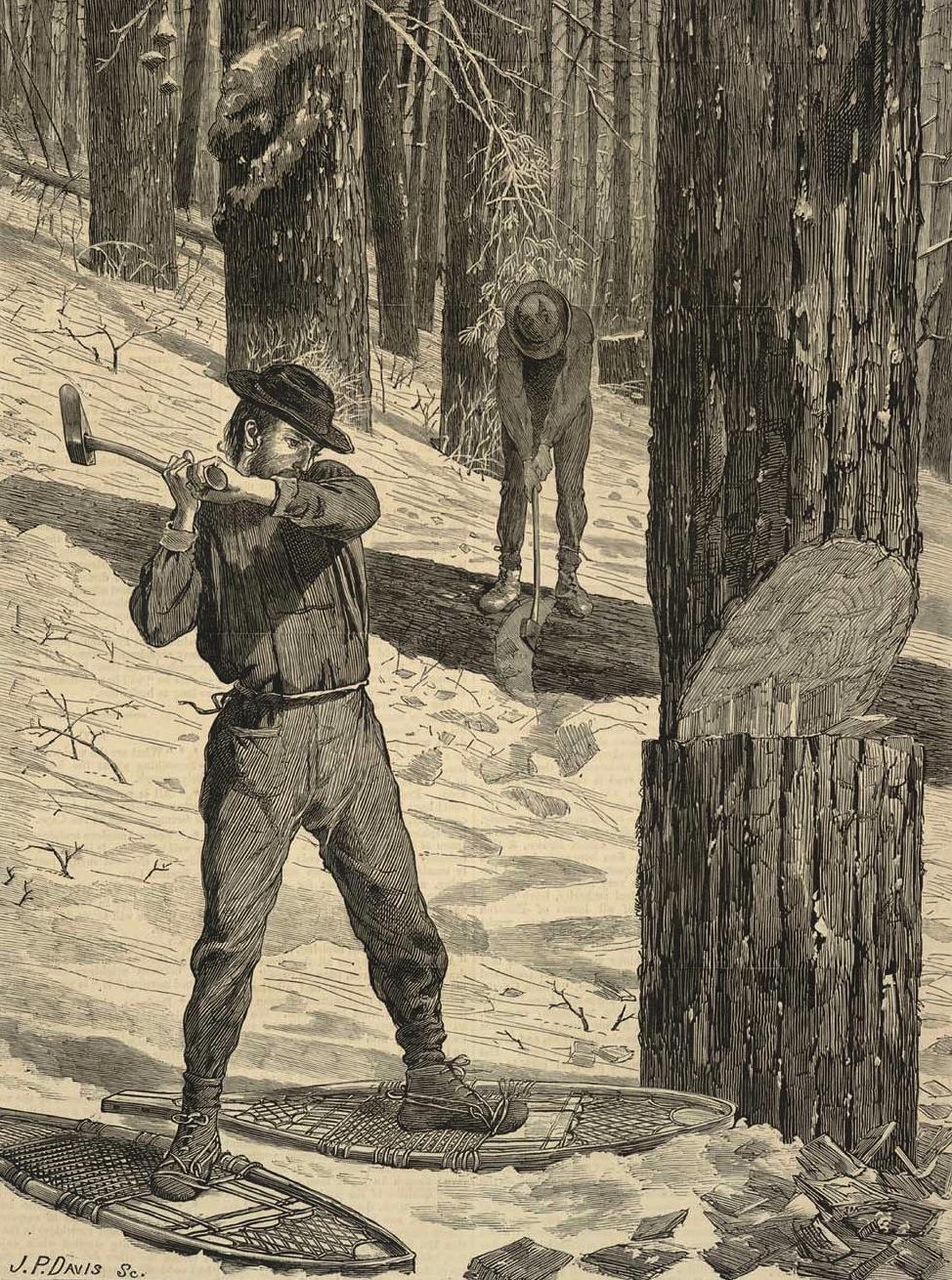 19th Century American Paintings Winslow Homer