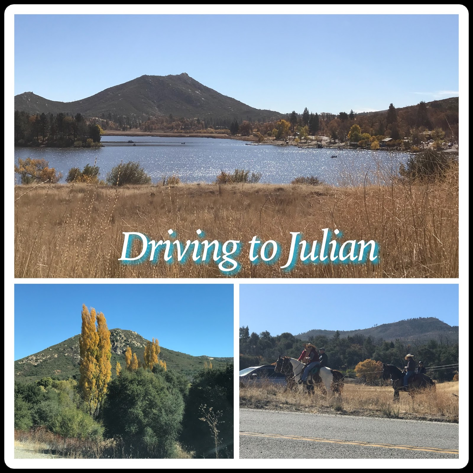 once in the charming town of julian where they have a 24 7 webcam that is located on top of the town hall you ll find that it s very easy to walk the