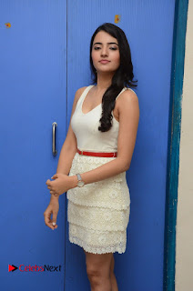 Actress Ruksaar Mir Pictures in Short Dress at Showtime Movie Logo Launch  0009