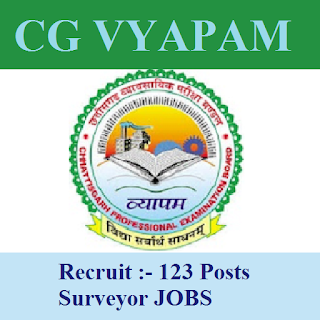 Chhattisgarh Professional Examination Board, CGVYAPAM, surveyor, 12th, ITI, Chhattisgarh, freejobalert, Sarkari Naukri, Latest Jobs, cgvyapam logo
