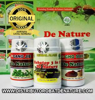 Obat Herbal Khusus Sipilis De Nature Indonesia